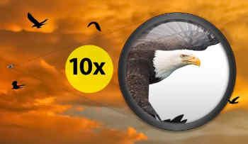 National-Geographic-10x50-Porro-Binoculars-Reviews