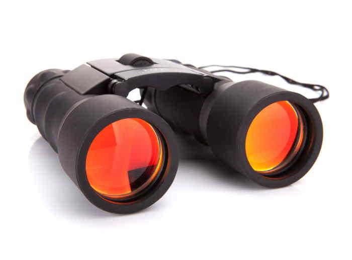 simmons-prosport-binoculars-8-17x25-review