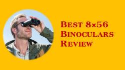 Best 8×56 Binoculars Review