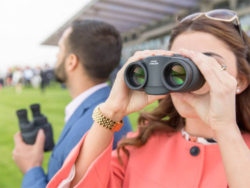 best image stabilized binoculars reviews