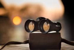 best binoculars for low light conditions