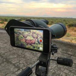 vortex diamondback spotting scope reviews