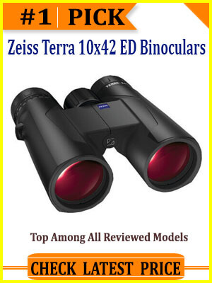 best binoculars sidebar