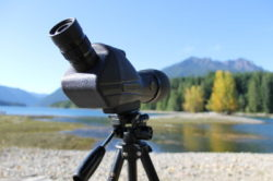 best spotting scope tripod reviews