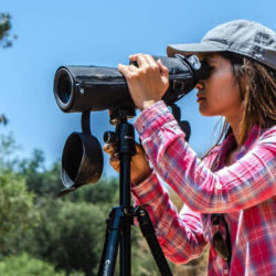 best spotting scope under 500 dollars