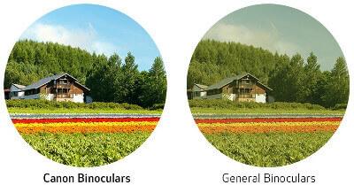 Image stabilized binoculars