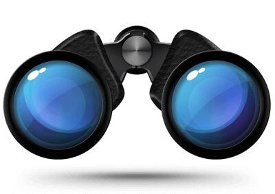 8x42 or 10x42 binoculars