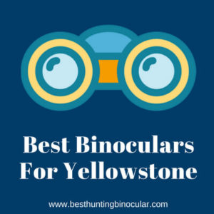 Best Binoculars For Yellowstone