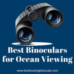 Best Binoculars for Ocean Viewing
