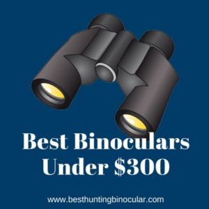 Best Binoculars Under 300 dollars